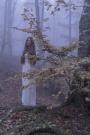 Irene Model - Autunno in Alpe di Catenaia